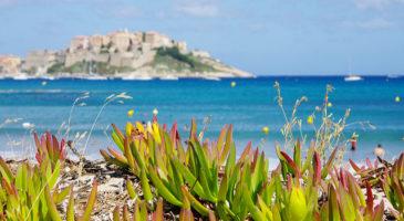 Vakanties Corsica Italië